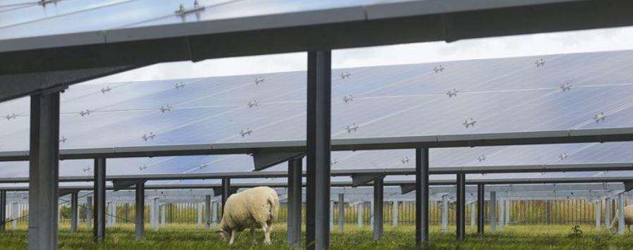 Stormloop op grond voor zonneparken