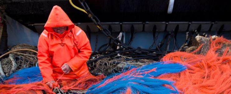 Totaalverbod zwartste scenario voor pulsvisser